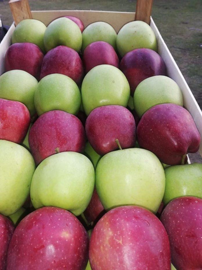 Цена на јаболката по региони