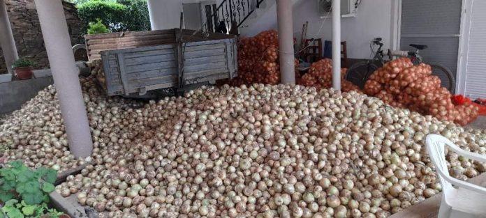 Се продава кромид